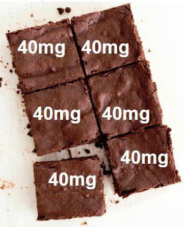 brownies cut into 6 squares
